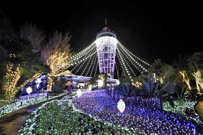 湘南の宝石 江の島を彩る光と色の祭典