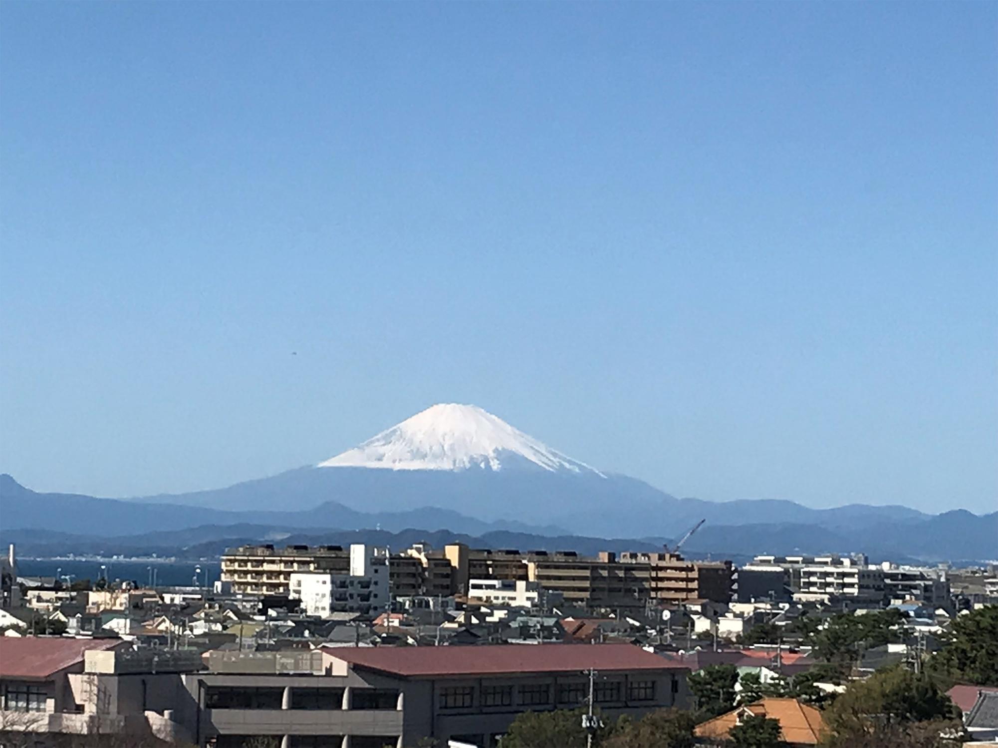 湘南江の島駅は、日本一高い駅だった!?〜日本一、地上高が高い駅はどこか?