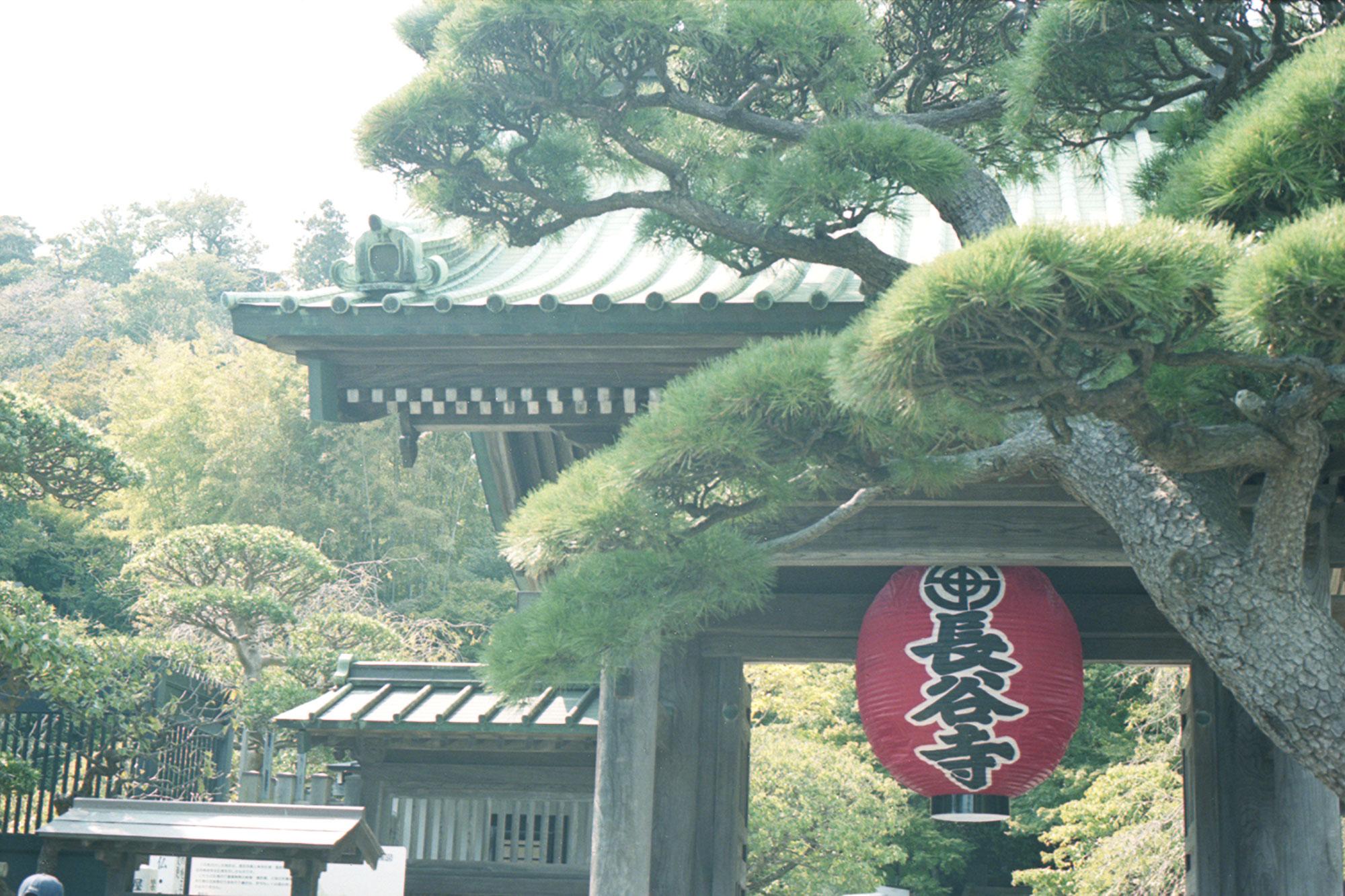 長谷寺と陶芸体験