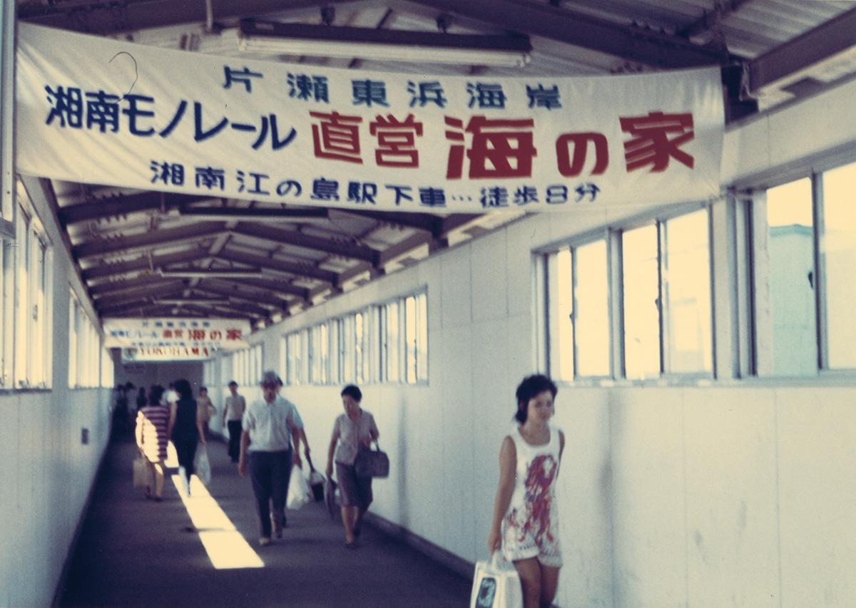 #40 ついに全線開通!大船―湘南江の島